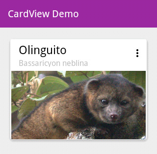 android cardview and toolbar