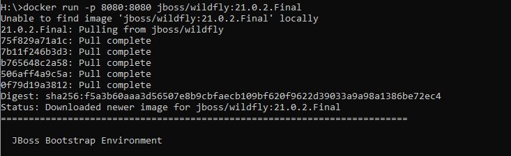 docker run download image wildlfy
